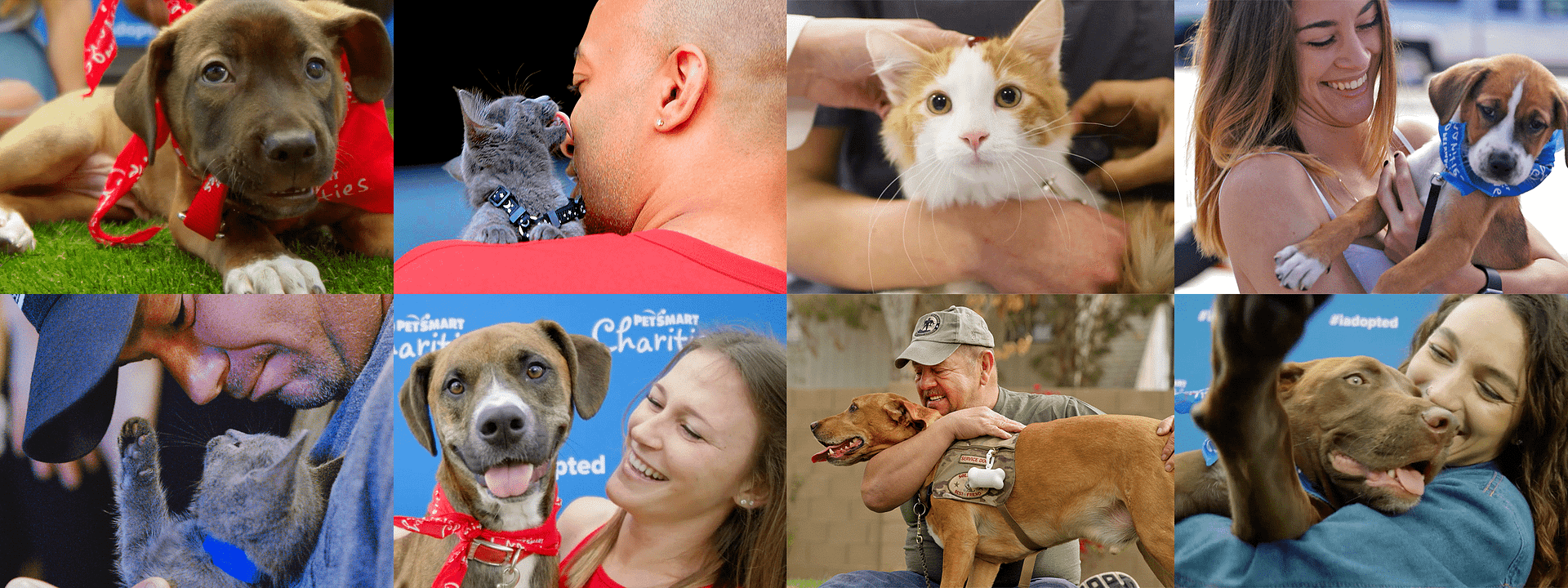 a tiled image of people interacting with pets at petsmart charities adoption events